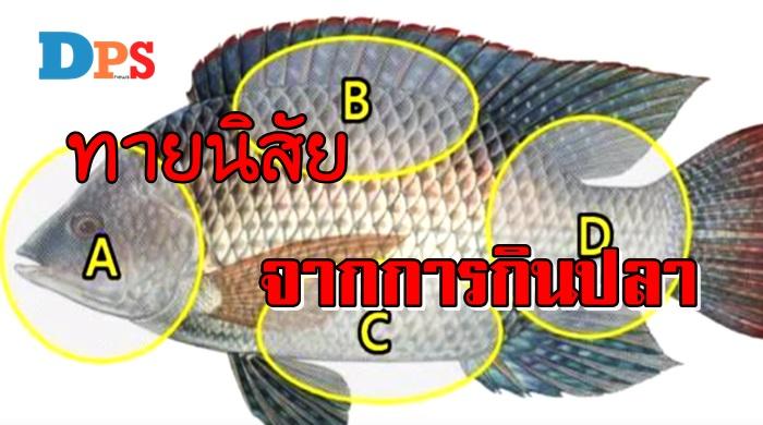"""Photo of ชอบกิน """"ส่วนไหนของปลา"""" เป็นอันดับแรก ทายนิสัยได้แม่นยำมากๆ"""
