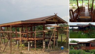 Photo of บ้านไม้ยกพื้นสูง แบบไทยๆกลางทุ่ง แวดล้อมด้วยธรรมชาติ และทุ่งนา