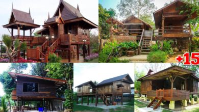 Photo of 15 ไอเดียแบบบ้านไม้ไทยๆ ยกพื้นสูง สไตล์ชนบท