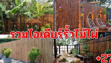 Photo of รวมไอเดียรั้วไม้ไผ่ เพิ่มความสวยงาม ปลอดภัยน่าอยู่ ของบ้านและสถานที่อยู่อาศัย