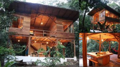 Photo of ไอเดียบ้านไม้ยกพื้นสูง ท่ามกลางธรรมชาติ น่าอยู่สวยงามทุกมุมมอง