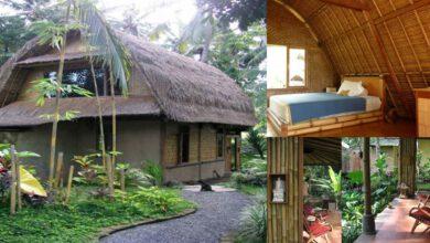 Photo of ไอเดียง่ายๆ บ้านหลังคามุงจาก Eco Houseบ้านท่ามกลางธรรมชาติบรรยากาศน่าอยู่