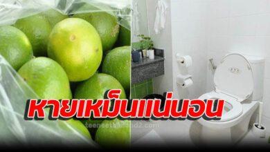 Photo of 6 วิธีแก้ห้องน้ำเหม็น ส่งกลิ่นโชยออกมา ใช้ได้ทุกที่ ห้องครัว พื้นกระเบื้อง